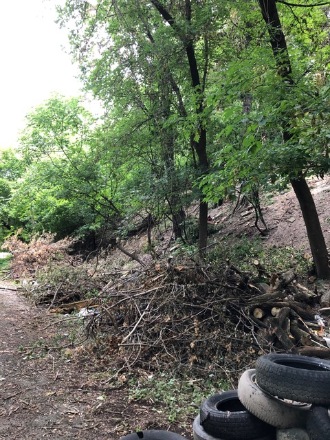 Leading to the 1179 St. Paul Property. More clearing remains to be done. Brush piles were gathered from  hillside debris.