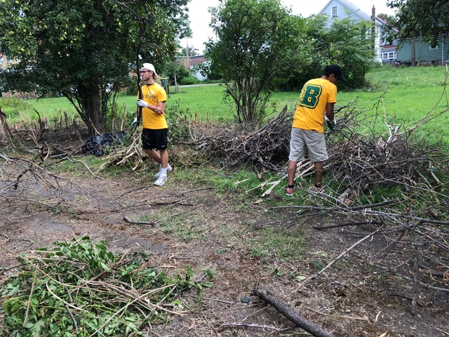 Clearing debris piles along driveway.